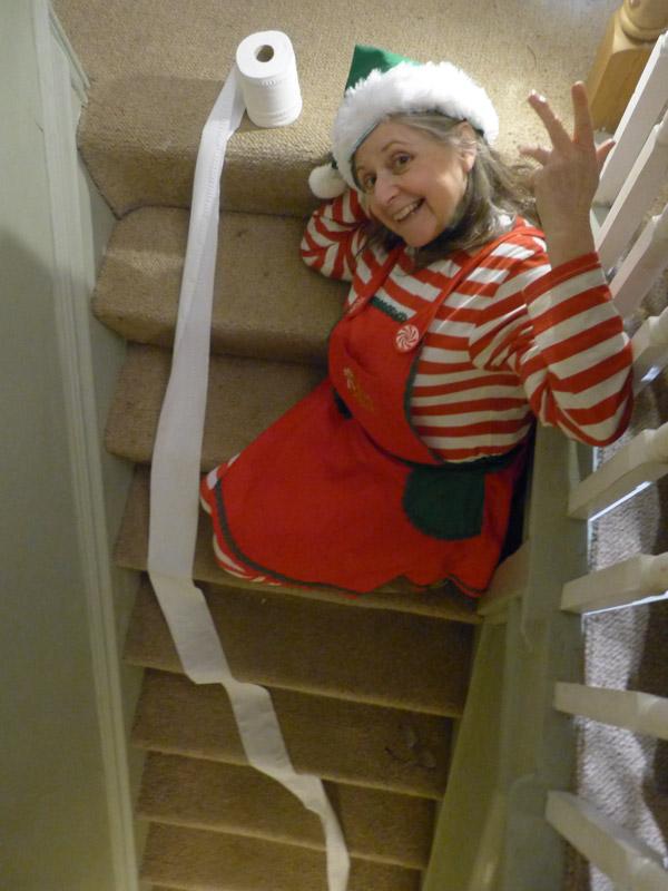 Selfie Elfie with toilet roll